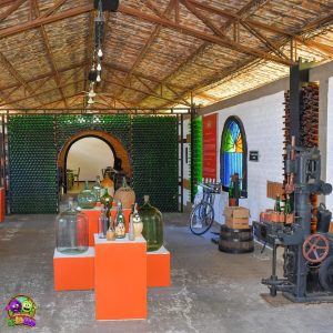 Museo-de-la-Uva-y-el-Vino